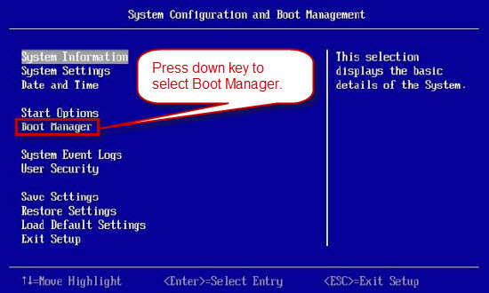 Boot from cd/dvd ibm entry key